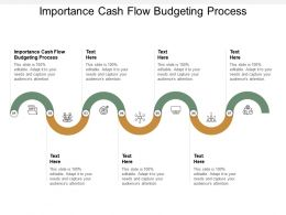 Importance Cash Flow Budgeting Process Ppt Powerpoint Presentation Slides Outfit Cpb