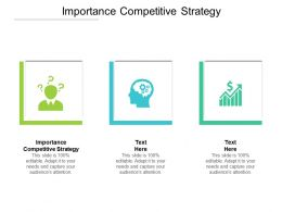 Importance Competitive Strategy Ppt Powerpoint Presentation Professional Cpb