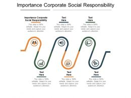 Importance Corporate Social Responsibility Ppt Powerpoint Presentation Outline Files Cpb