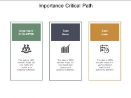 Importance Critical Path Ppt Powerpoint Presentation Inspiration Vector Cpb