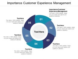 Importance Customer Experience Management Ppt Powerpoint Presentation Visual Aids Pictures Cpb