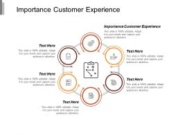 Importance Customer Experience Ppt Powerpoint Presentation Icon Background Images Cpb