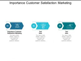 Importance Customer Satisfaction Marketing Ppt Powerpoint Presentation Icon Graphics Cpb