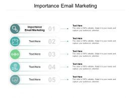 Importance Email Marketing Ppt Powerpoint Presentation Styles Template Cpb