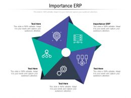 Importance ERP Ppt Powerpoint Presentation Icon Rules Cpb