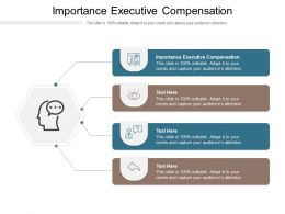 Importance Executive Compensation Ppt Powerpoint Presentation Portfolio Slide Download Cpb
