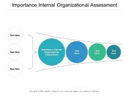 Importance Internal Organizational Assessment Ppt Powerpoint Presentation Icon Cpb