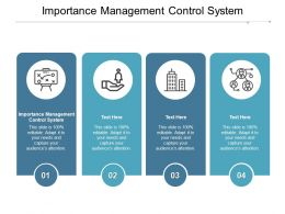 Importance Management Control System Ppt Powerpoint Presentation Infographics Example Cpb