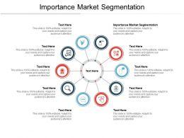 Importance Market Segmentation Ppt Powerpoint Presentation Portfolio Layouts Cpb