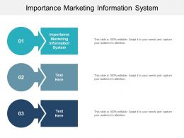 Importance Marketing Information System Ppt Powerpoint Presentation Professional Cpb