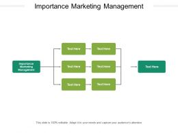 Importance Marketing Management Ppt Powerpoint Presentation Themes Cpb