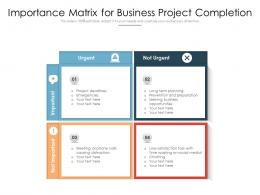 Importance Matrix For Business Project Completion