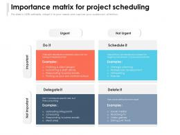 Importance Matrix For Project Scheduling