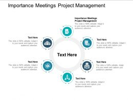 Importance Meetings Project Management Ppt Powerpoint Presentation Summary Guide Cpb