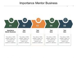 Importance Mentor Business Ppt Powerpoint Presentation Styles File Formats Cpb