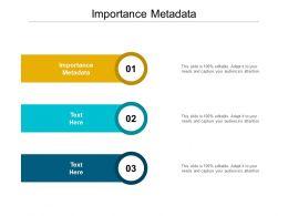 Importance Metadata Ppt Powerpoint Presentation File Background Designs Cpb