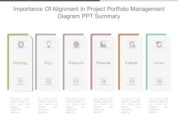 Importance Of Alignment In Project Portfolio Management Diagram Ppt Summary