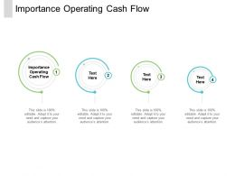 Importance Operating Cash Flow Ppt Powerpoint Presentation Icon Examples Cpb