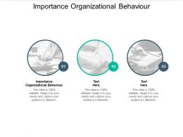 Importance Organizational Behaviour Ppt Powerpoint Presentation Slides Visual Aids Cpb