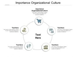 Importance Organizational Culture Ppt Powerpoint Presentation Gallery Outfit Cpb