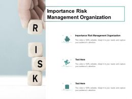 Importance Risk Management Organization Ppt Powerpoint Slides Cpb