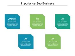 Importance SEO Business Ppt Powerpoint Presentation File Icon Cpb