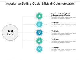 Importance Setting Goals Efficient Communication Ppt Powerpoint Presentation Inspiration Structure Cpb