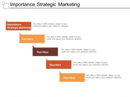 Importance Strategic Marketing Ppt Powerpoint Presentation Icon Diagrams Cpb