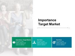 Importance Target Market Ppt Powerpoint Presentation Summary Outfit Cpb