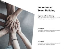 Importance Team Building Ppt Powerpoint Presentation Styles Designs Cpb