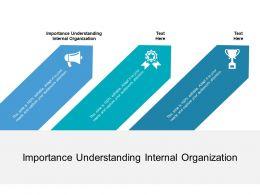 Importance Understanding Internal Organization Ppt Powerpoint Presentation Gallery Model Cpb