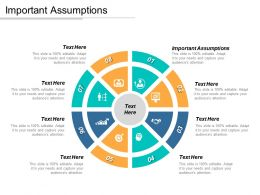 Important Assumptions Ppt Powerpoint Presentation Icon Model Cpb