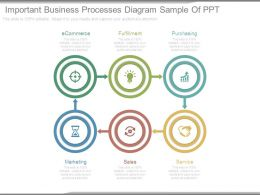 Important Business Processes Diagram Sample Of Ppt