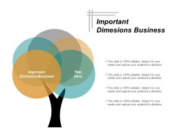 Important Dimesions Business Ppt Powerpoint Presentation Inspiration Infographics Cpb