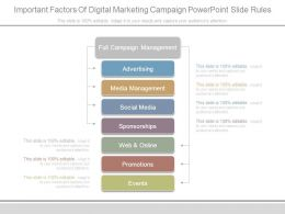 Important Factors Of Digital Marketing Campaign Powerpoint Slide Rules