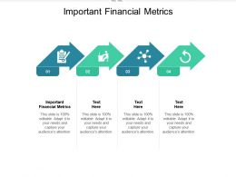 Important Financial Metrics Ppt Powerpoint Presentation Summary Themes Cpb