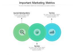Important Marketing Metrics Ppt Powerpoint Presentation File Layout Cpb