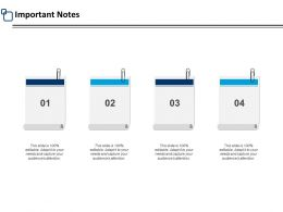 Important Notes Post It Strategy Ppt Powerpoint Presentation Outline Mockup