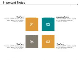 Important Notes Ppt Powerpoint Presentation Infographic Template Show Cpb