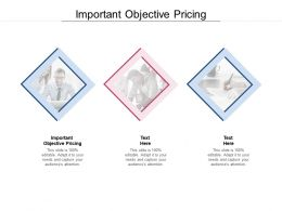 Important Objective Pricing Ppt Powerpoint Presentation Show Cpb