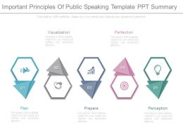 Important Principles Of Public Speaking Template Ppt Summary