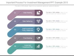 Important Process For Investment Management Ppt Example 2015