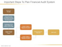 Important Steps To Plan Financial Audit System Ppt Diagrams