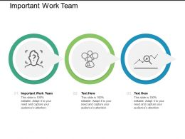 Important Work Team Ppt Powerpoint Presentation Professional Mockup Cpb