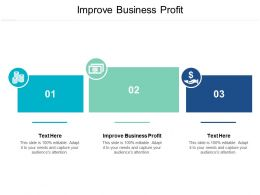 Improve Business Profit Ppt Powerpoint Presentation Ideas Portfolio Cpb