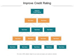 Improve Credit Rating Ppt Powerpoint Presentation Infographics File Formats Cpb