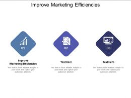 Improve Marketing Efficiencies Ppt Powerpoint Presentation Infographic Template Examples Cpb