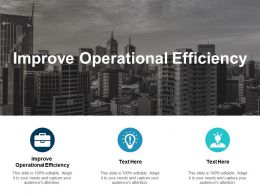 Improve Operational Efficiency Ppt Powerpoint Presentation Icon Cpb