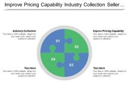 Improve Pricing Capability Industry Collection Seller Goods Service