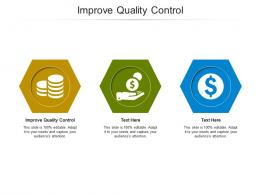 Improve Quality Control Ppt Powerpoint Presentation Model Objects Cpb